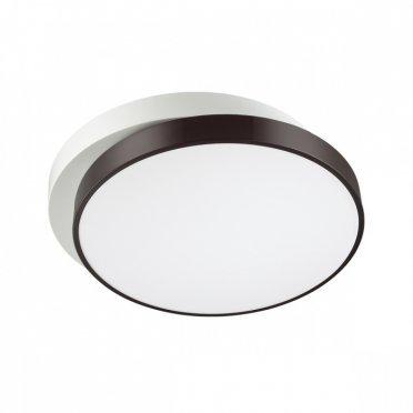 Светильник потолочный Lumion Agatha 4509/72CL