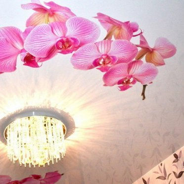 Натяжной потолок фотопечать орхидея