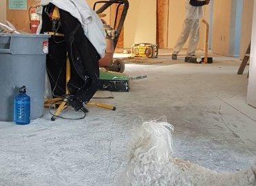 Косметический ремонт 3 комнатной квартиры
