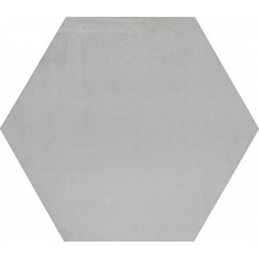 Раваль серый светлый SG27001N 29х33,4