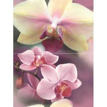 Blossom Панно P2D183 40х30 (из 2-х пл.)