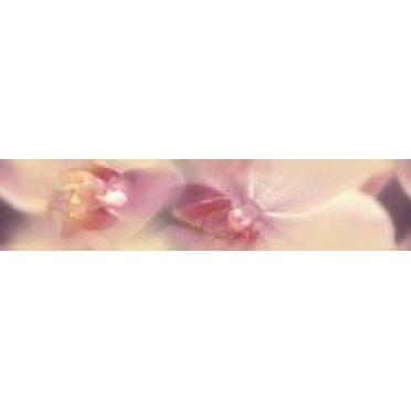 Blossom Бордюр B200D183 4,5х20
