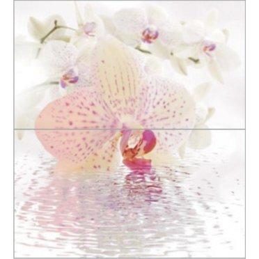 Dec Orchid Panno (рисунок из 2-х шт) КПН16Orchid 50х45